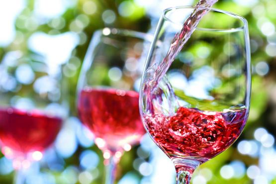 Novorossiysk invites you to taste wine from new harvest