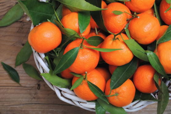 Tangerine season led experts to tell about the secrets of the fruit