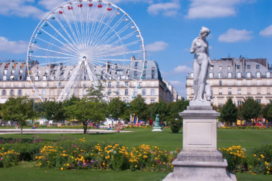City Hall of Paris allowed to walk dogs in all parks of the city
